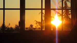 Emily Chadbourne Mindset Coach Warm Window View